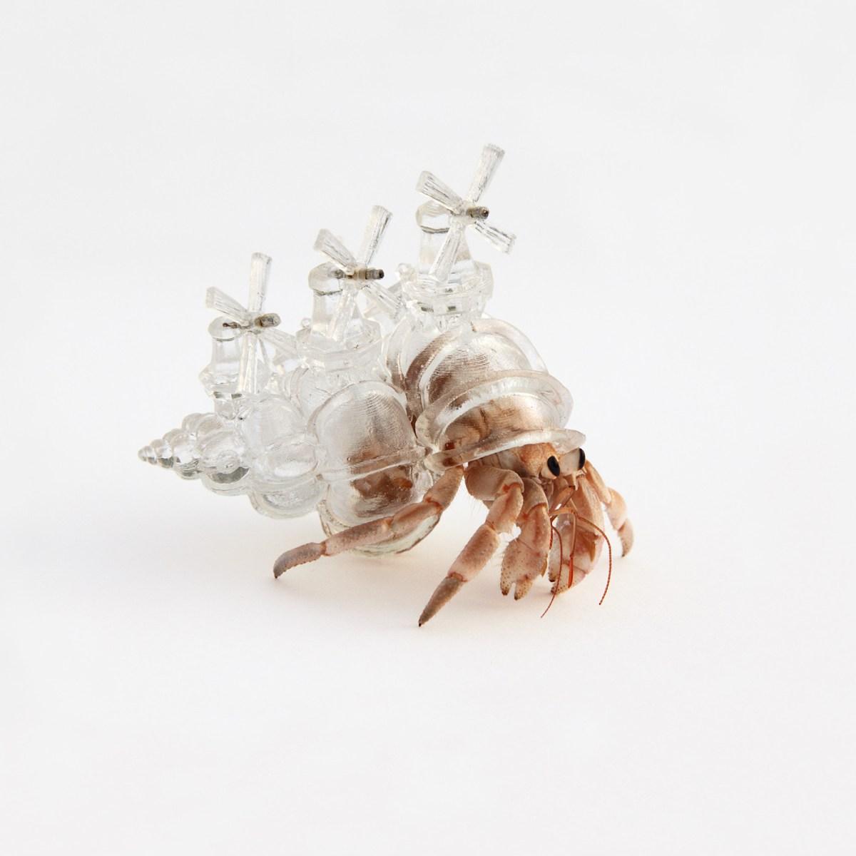 Aki Inomata Hermit Crab Shelters Art