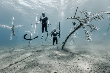Forlane 6 Studio Underwater Art Installation