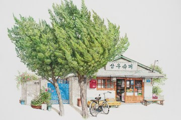 Me Kyeoung Lee Storefronts Art