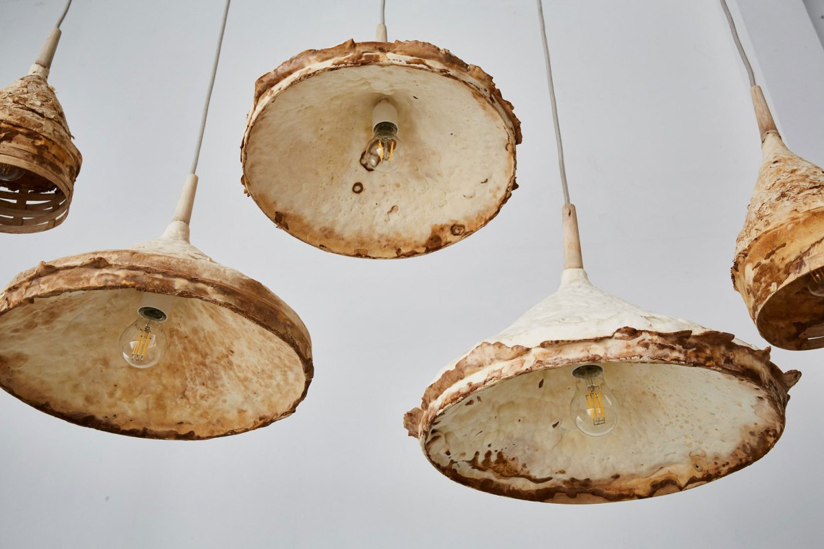 Fungus Wood Furniture Mycelium+Timber
