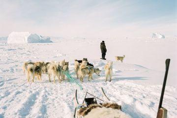 Michael Novotny Arctic Hunters