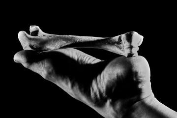 Alycia Kravitz Bones