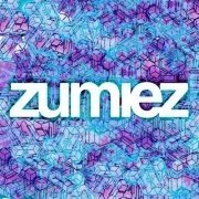 Sports Clothing Stores like Zumiez