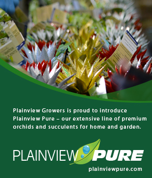 plainview-growers-pure-succulents-07