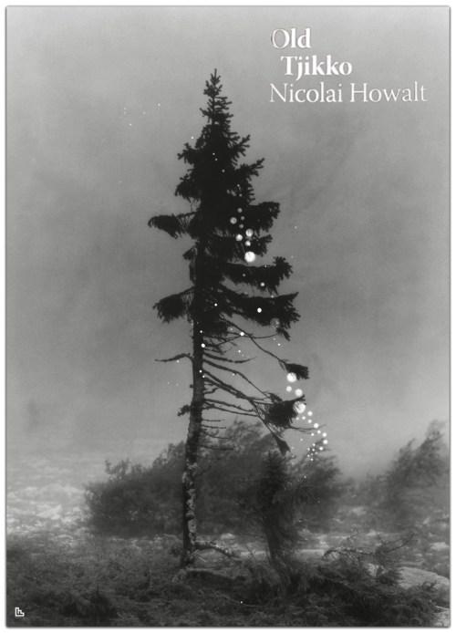 Nicolai Howalt Old Tjikko