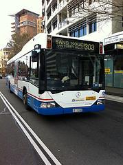 bus 303