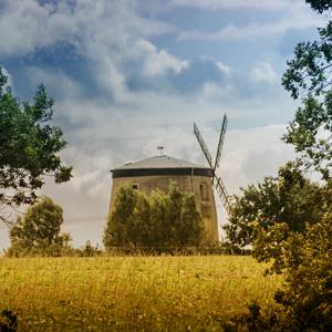 Schönburger Land, Mühle in Schönberg, Ortsteil Tettau