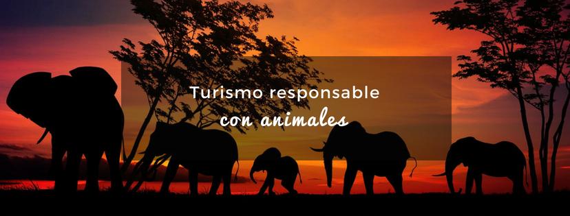 plan b viajero, turismo responsable con los animales