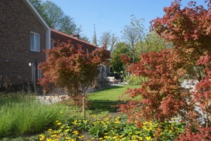 Landschapsarchitectuur: zorginstelling