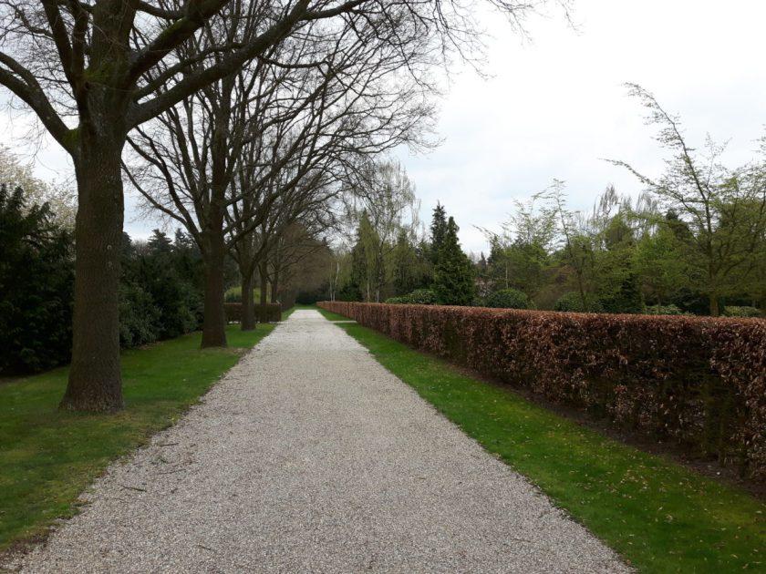 Strakke lijnen met bomenrijen, hagen en gazons, Zuiderhof