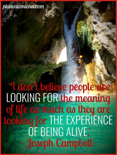 'I don't believe people are looking for the meaning of life as much as they are looking for the experience of being alive.' - Joseph Campbell