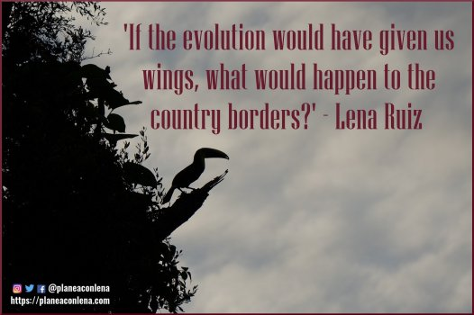 'If the evolution would have given us wings, what would happen to the country borders?' - Lena Ruiz