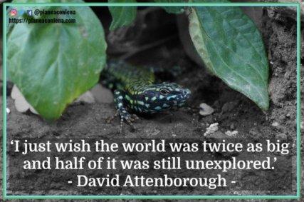 'Solo desearía que el mundo fuera el doble de grande y la mitad todavía no había sido explorado.' - David Attenborough