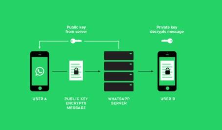 Por Que Fornecer Suporte Ao Cliente Por Meio Do Whatsapp