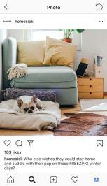 Conteudo De Instagram Para Decoracao