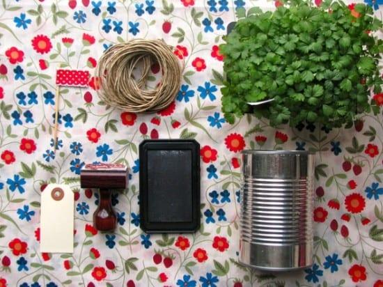 Lembrancinha de casamento: sustentável: mudas de plantas em latas