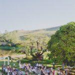 Casamento no campo feito na Fazenda do Serrote em Minas Gerais, com cadeiras e altar organizados. Foto: Clique e Pausa.