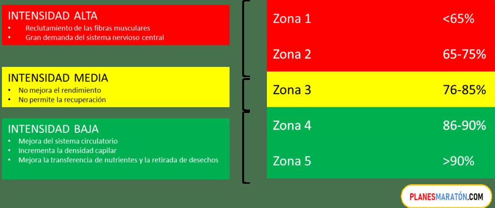 Zonas de entrenamiento por frecuencia cardiaca
