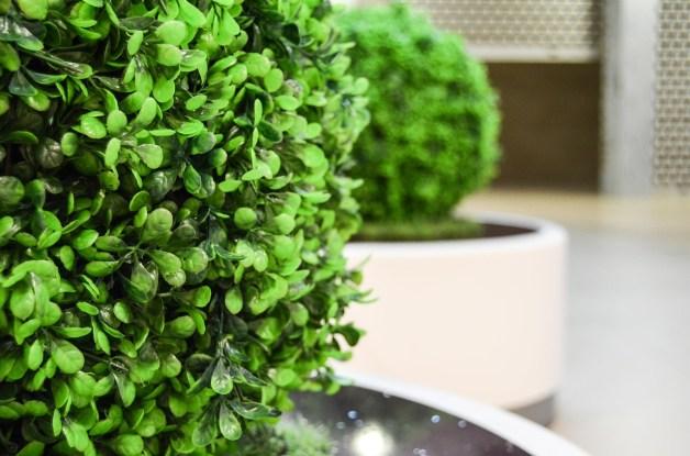 Avantage des plantes artificielles.