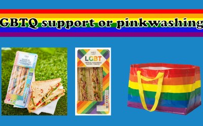 The LGBTQ rainbow and brands – LGBTQ support or pinkwashing?