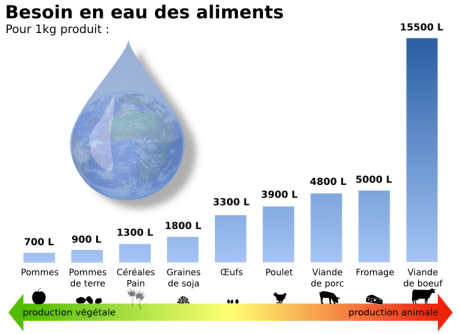 Visuel L214: besoin en eau