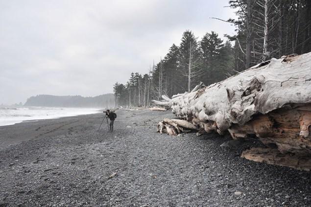 Que faire à Seattle et Vancouver ?
