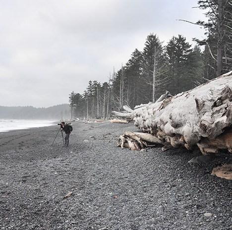 Les Rocheuses Canadiennes et ma rencontre avec les ours