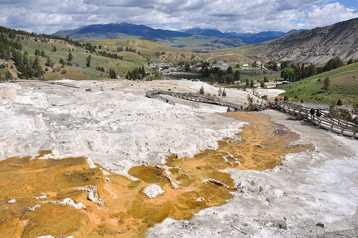 Yellowstone National Park : Mammoth Hot Springs
