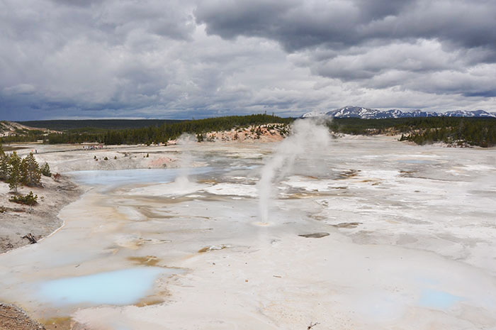 Yellowstone National park : Norris Geyser