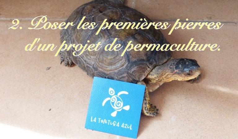 Mission de permaculture