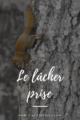 Pinterest - lacher prise