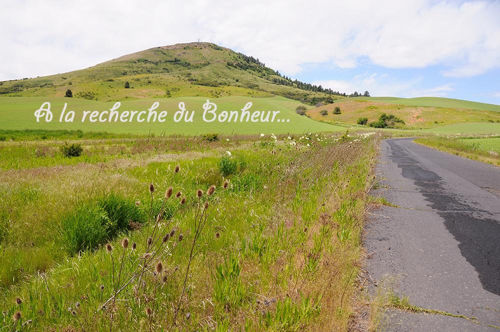 Read more about the article Comment trouver le bonheur