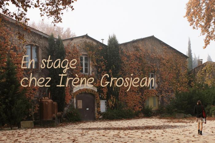 J'ai testé : l'alimentation vivante avec Irène Grosjean