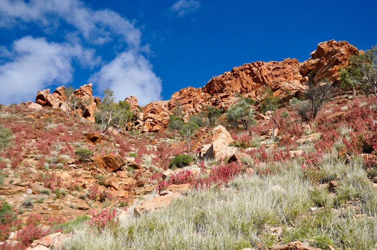 Alice Springs_E (4)