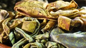 Read more about the article Textile écologique : guide des matières