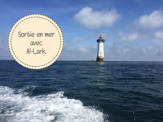 Voir des Dauphins en Bretagne avec Al-Lark