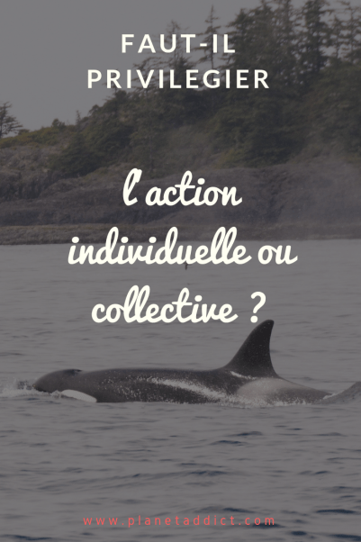 Pinterest-action collective