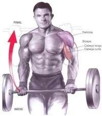 Bíceps Direto com Barra Reta e Pegada Supinada