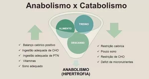 aumentar-anabolismo-diminuir-catabolismo