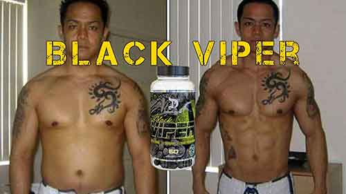 Black Viper Dragon Pharma Resultados