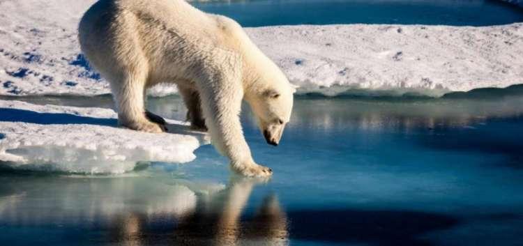 La Tierra corre el riesgo de caer en unestado invernadero irreversible