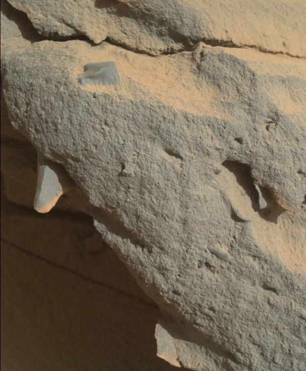 Close-up view of one of the teeth-like protrusions, from sol 442. Click image for larger version. Credit: NASA / JPL-Caltech