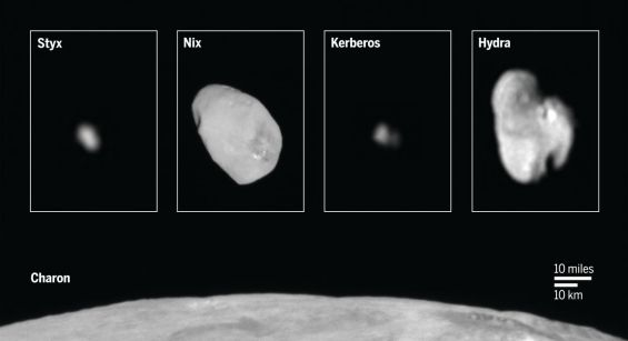 Pluto's smaller moons, Styx, Nix, Kerberos and Hydra, compared in size to Charon. Image Credit: NASA/JHUAPL/SwRI