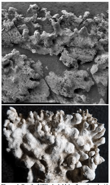 """The """"Elizabeth Mahon"""" feature seen by the Microscopic Imager on Spirit (top), compared with columnar sinter from El Tatio (bottom). Both images are about 5 cm across. Image Credit: NASA/JPL-Caltech/School of Earth and Space Exploration, Arizona State University"""