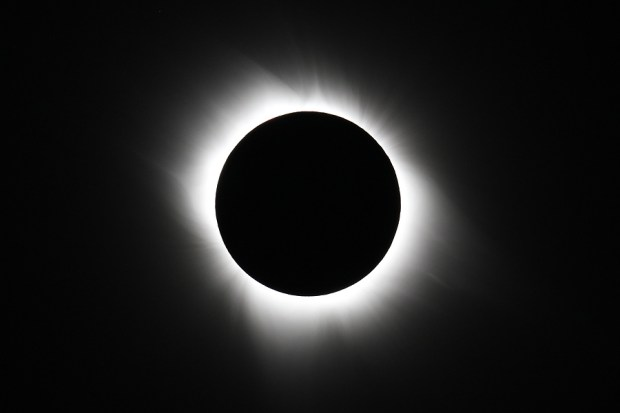 A total eclipse of the Sun, showing the Sun's atmosphere, or corona, stretching out into space, which is not normally visible during daylight. Photo Credit: Fred Espenak/NASA's Goddard Space Flight Center