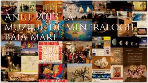 raport an 2013