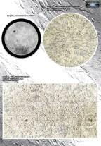 polish_moon_map_3