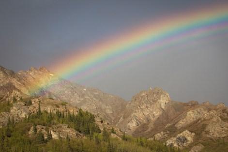 Denali Park Rainbow