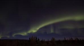 Aurora on Stampede Road