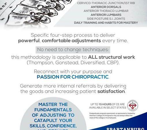 Full Spine Adjusting Mastery